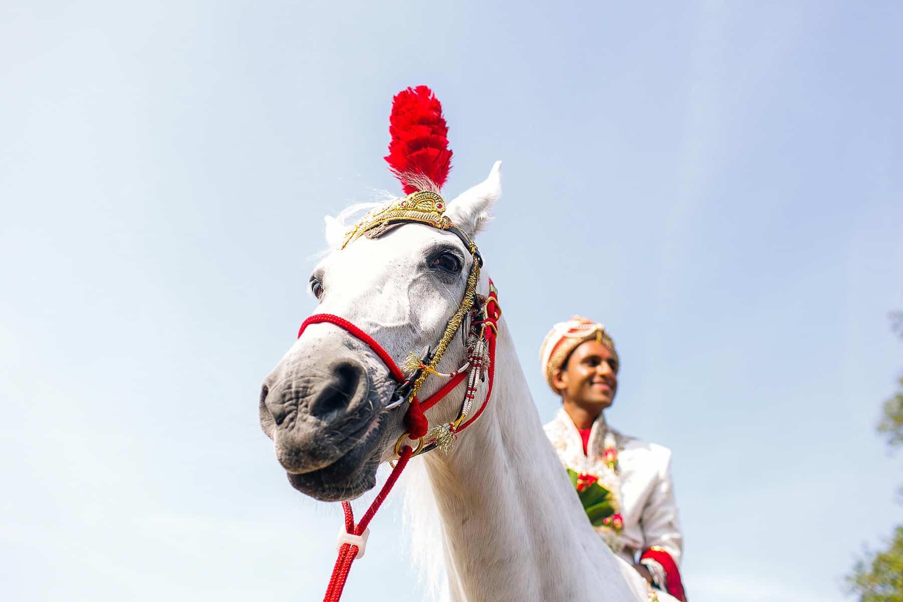 hilton syon park hindu weddings