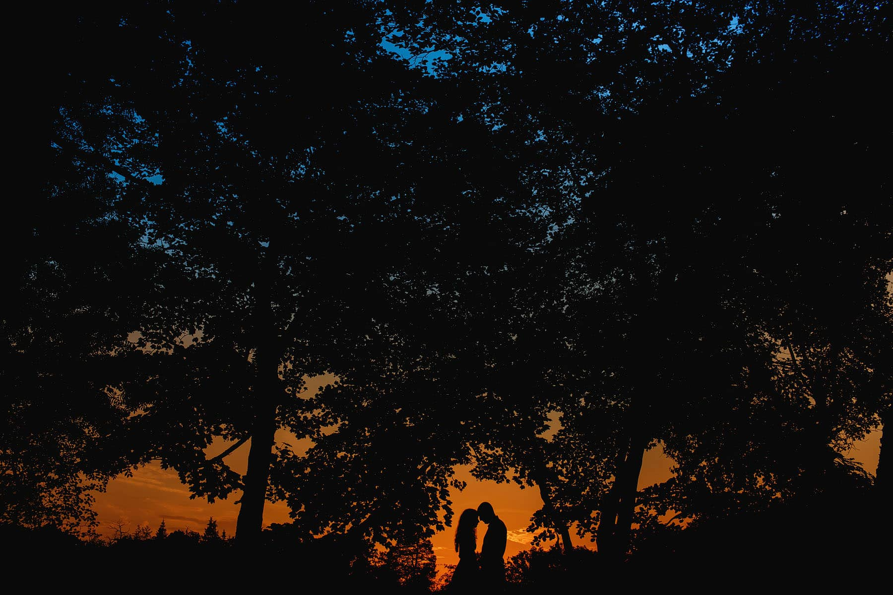 black park denham photography sunset